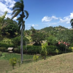 Se Vende: Solares en Jarabacoa, Republica Dominicana