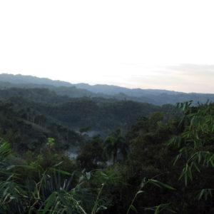 Se Vende: Finca de 3,773,160 m2 (6,000 tareas) en Jamao , Republica Dominicana.