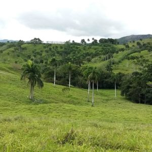 Se Vende: Finca de 2,075,700 m2 en Costa Norte, Republica Dominicana